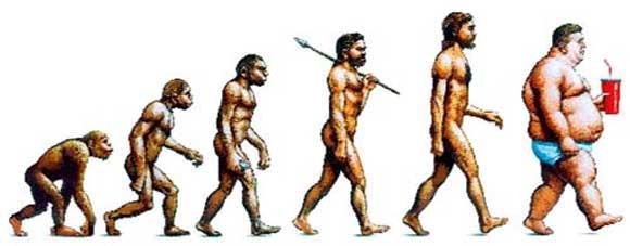 evolucao obesidade