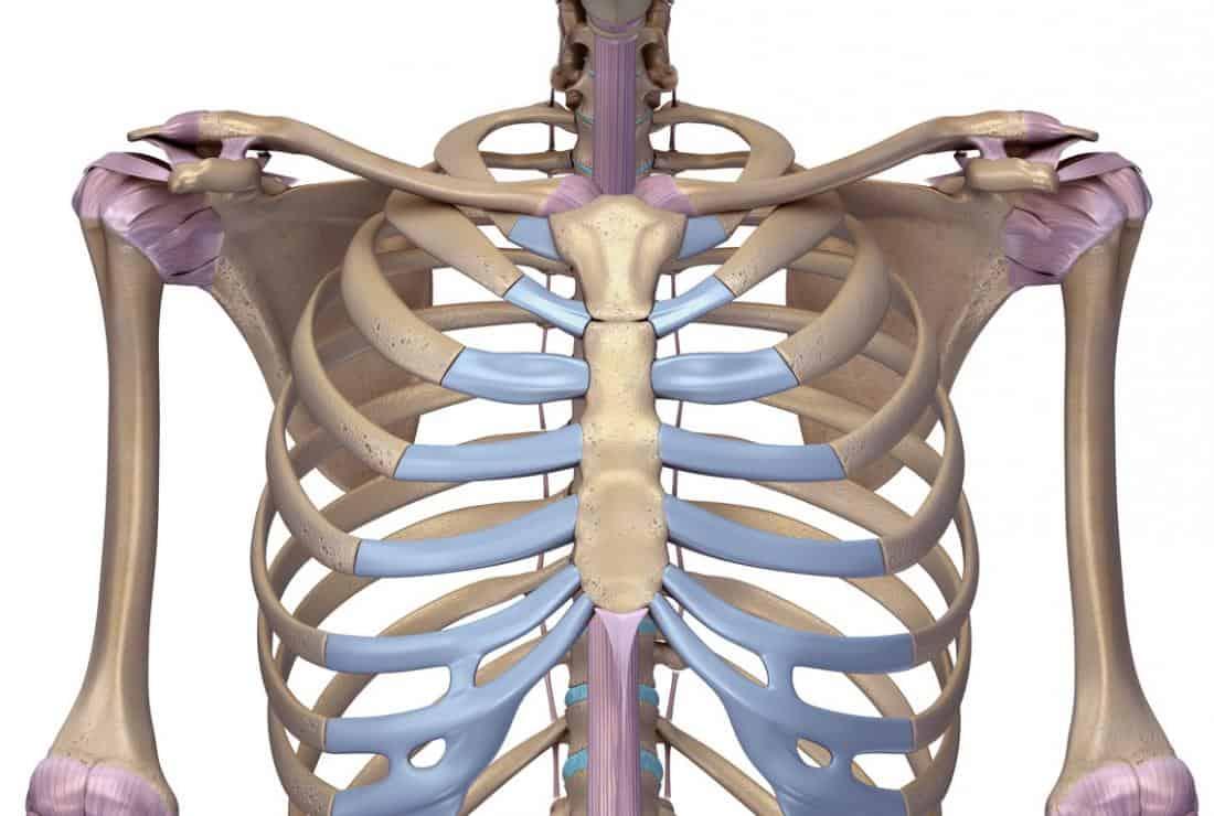 A costocondrite provoca dor e sensibilidade no peito, dor em mais de uma costela ou dor que piora com respirações profundas ou tosse.