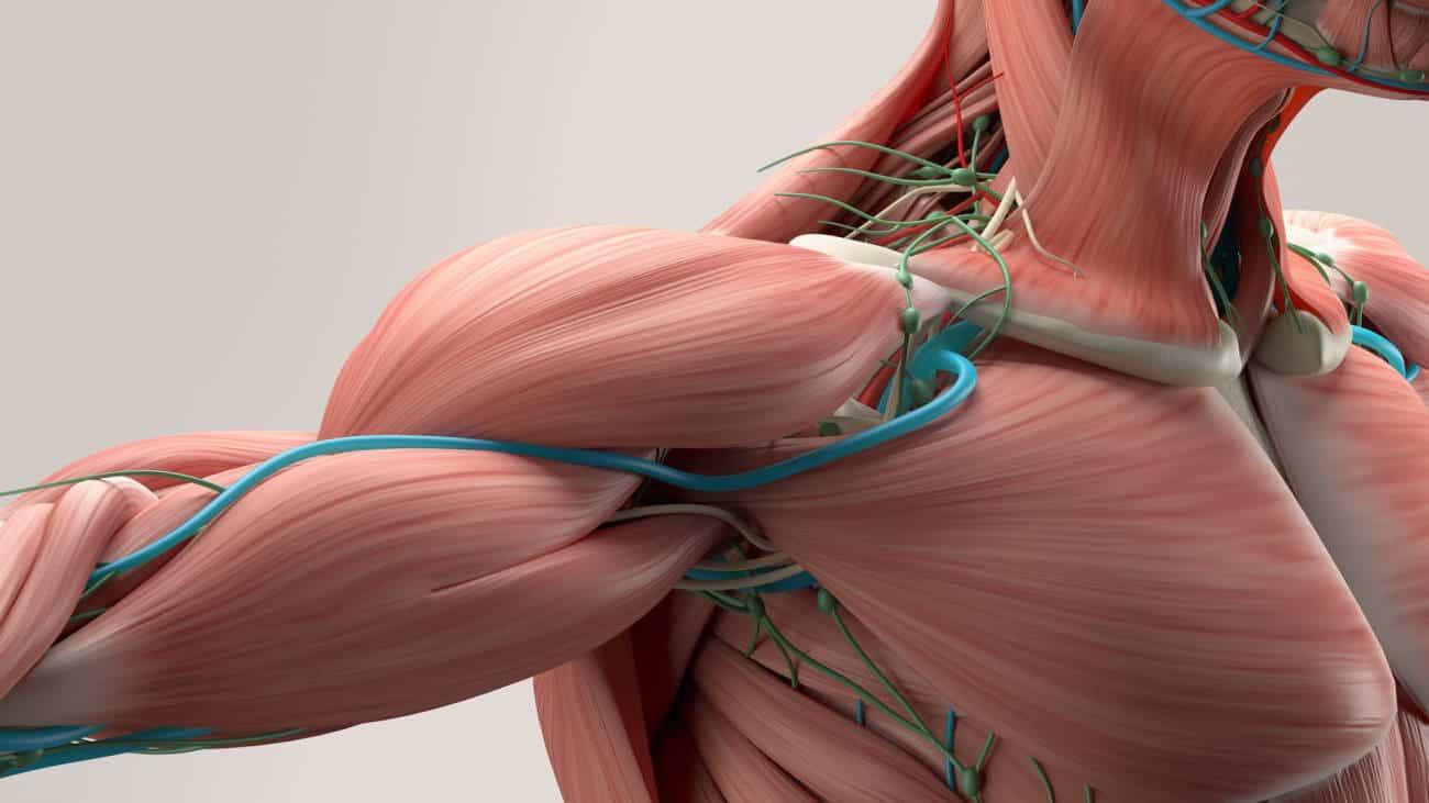 O que é a Síndrome do desfiladeiro torácico? | Clínica Dr. Hong ...